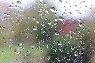 Water drops on a glass window