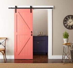 bold color door